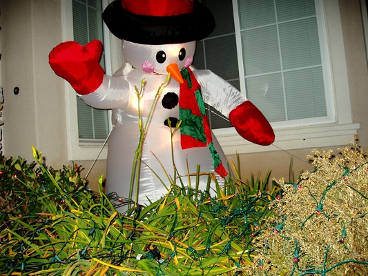 Product picture Holiday Cheer: Plastic Snowman Outside At Night - PLR